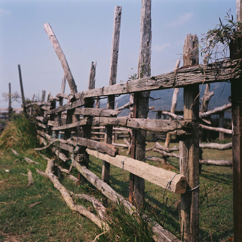 Fenced-in - Fuji Pro 160NS shot at EI 160. Color negative film in 120 format shot as 6x4.5.