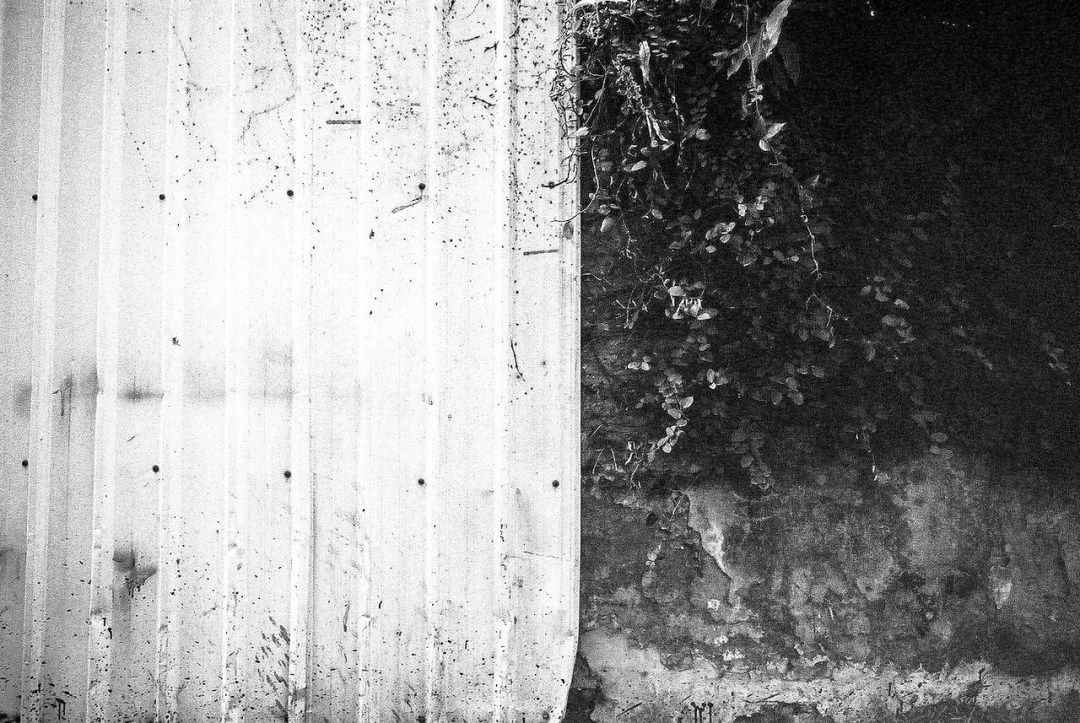 Two-tone - Fuji Neopan 400 shot at EI 200. Black and white negative in 35mm format. Push processed one stop.