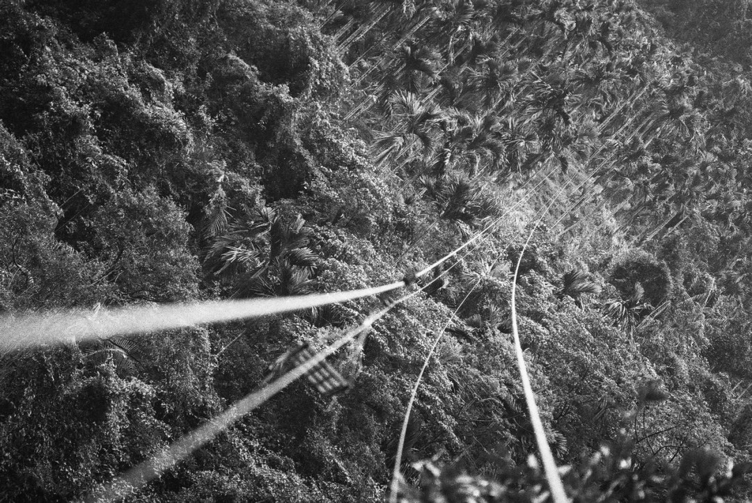 Beetlenut zipline - Ilford Delta 400 Professional shot at EI 800. Black and white film in 35mm format. Push processed one stop.