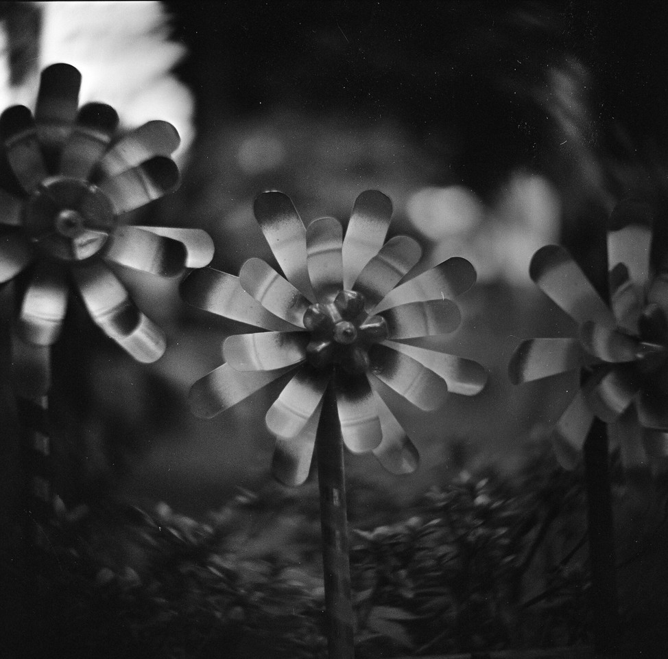 Spinning around - Rollei Infrared 400 shot at EI 400. Black and white infrared sensitive film in 120 format shot as 6x6.