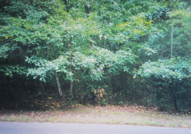 2001 Photo From Southold, NY