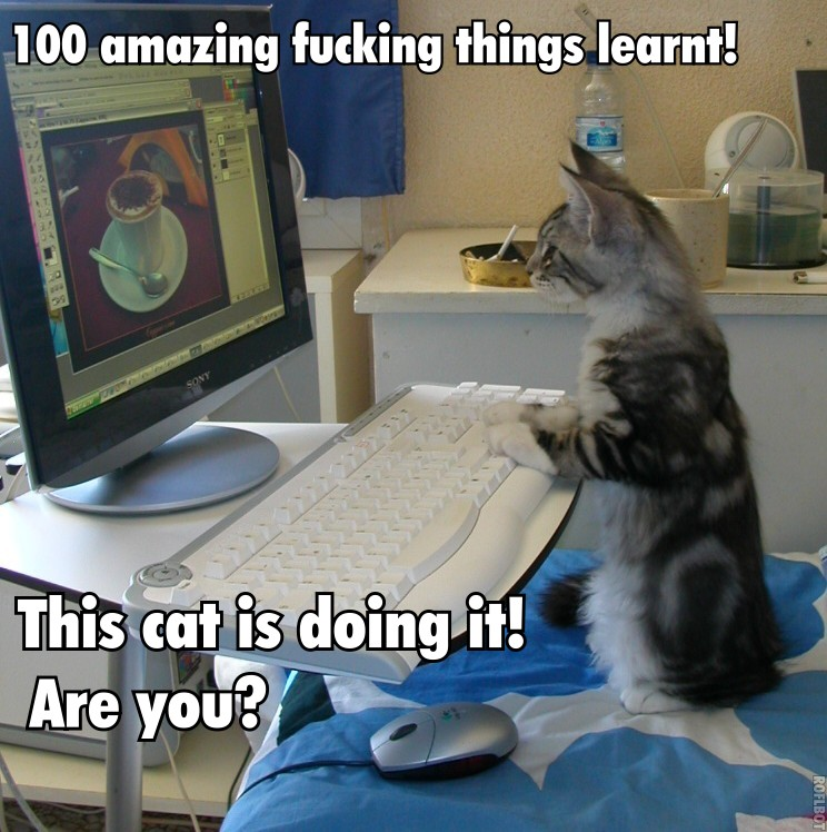 100 things blogging
