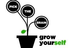 pick-the-brain-logo2