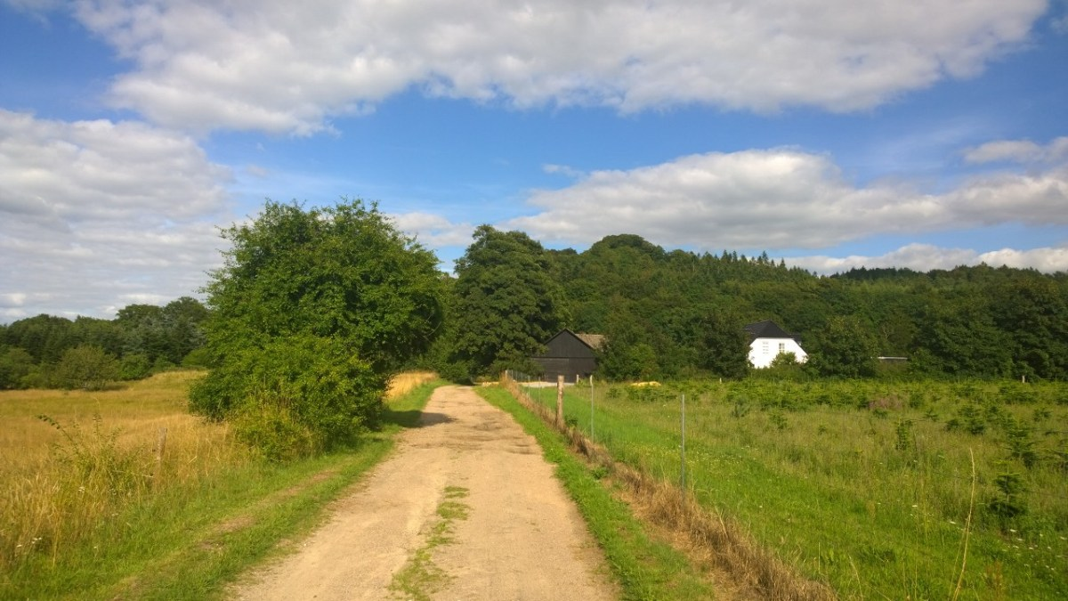 Sukkertoppen – Danmarks stejleste bjerg?