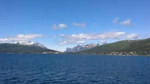 Arktisk Fjordcruise 2