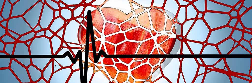 Как рассчитать и определить тренировочные зоны частоты пульса для разной кардио нагрузки и тренировки