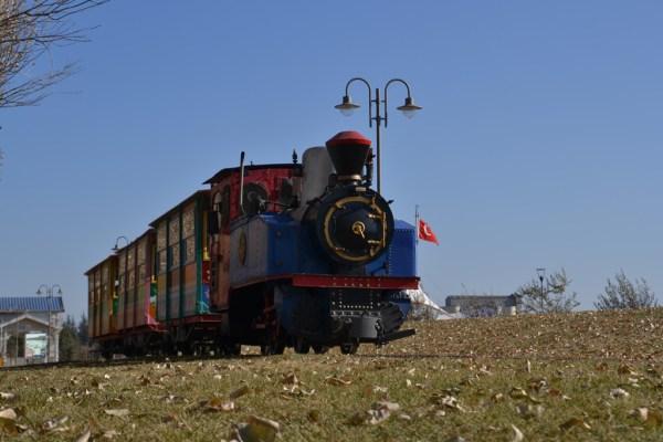 Train 3
