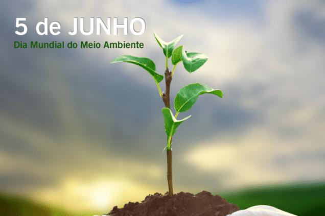 05 de Junho: Dia Mundial do Meio Ambiente