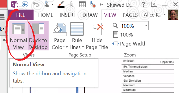 OneNote Normal View