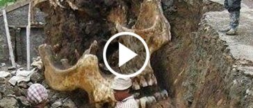 13 Giant Human Skeletons, Are They Real Or Fake?