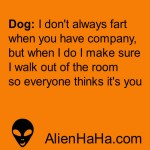 Funny Quotes 261-270