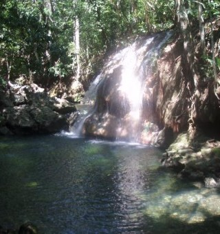 Finca Paraiso Guatemala