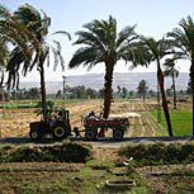 Exploring the fertile Nile Valley in Egypt