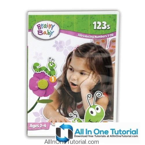 brainy_baby_123s_dvd_s_500_4_allinonetutorial-com