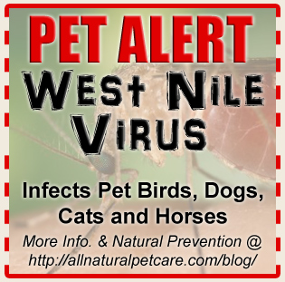 CDC Pet alert issued for West Nile Virus