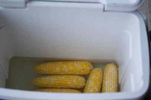 Cook Corn on the Cob in the Cooler