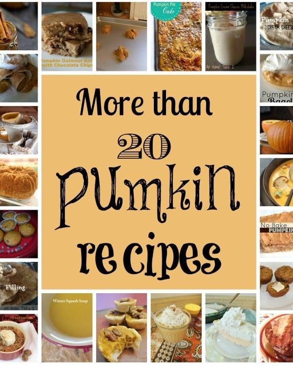 20 of the best pumpkin recipes from around the web. Try some of these pumpkin recipes to get your fill of tasty fall flavor.