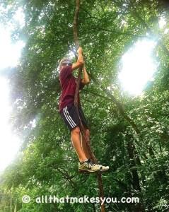 Tarzan Vine Swinging