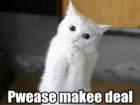 lolcat-make-deal-275x222-feature