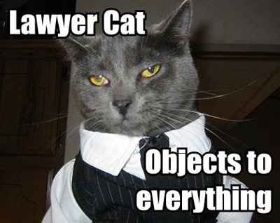 lawyer-lolcat