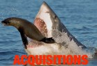 acquisitions_shark