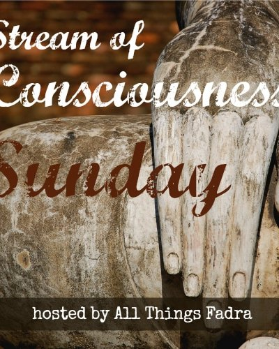Stream of Consciousness Sunday: To Party or Not To Party?
