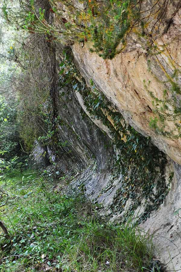 roca-camino