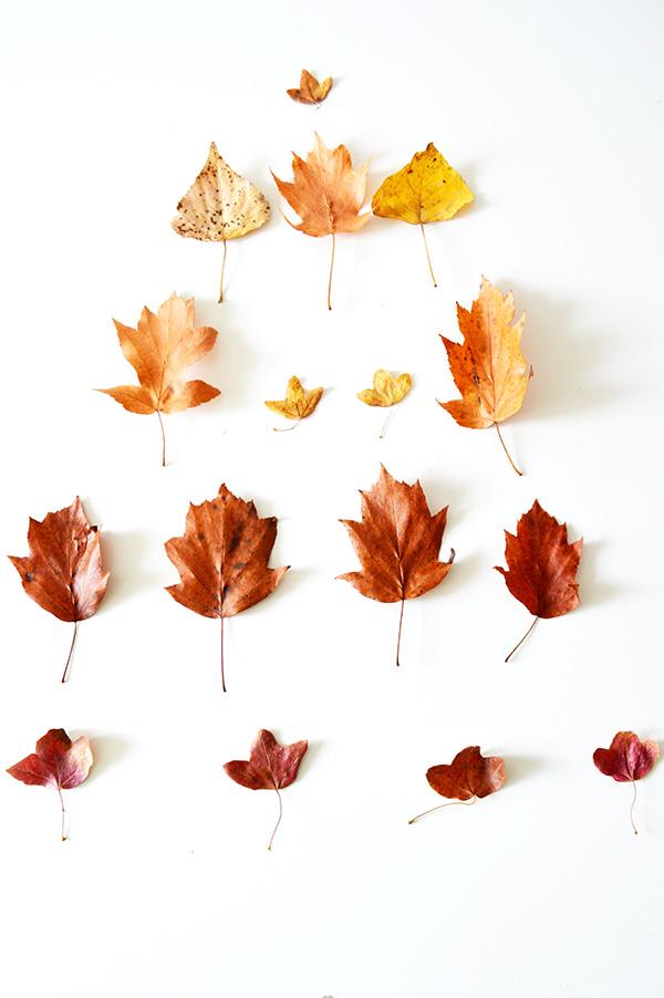 piramide-de-hojas