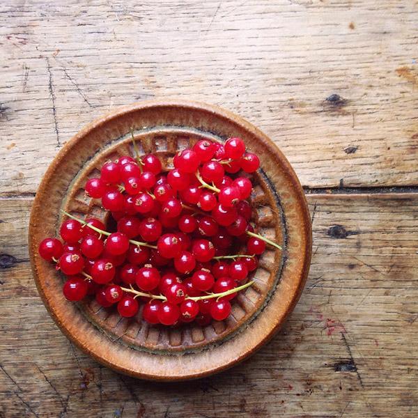 AllYourSites-Frutos Rojos-3