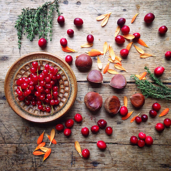 AllYourSites-Frutos-Rojos-5