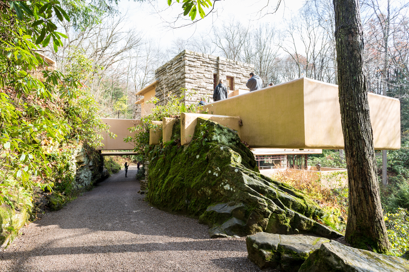 Rear view of Fallingwater