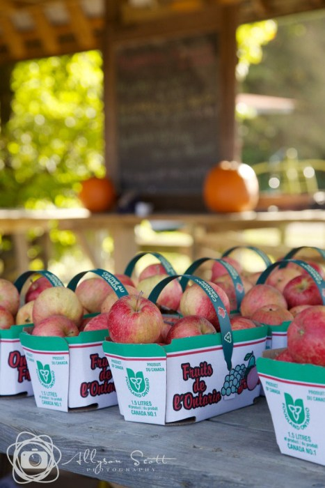 Baskets of apples for sale