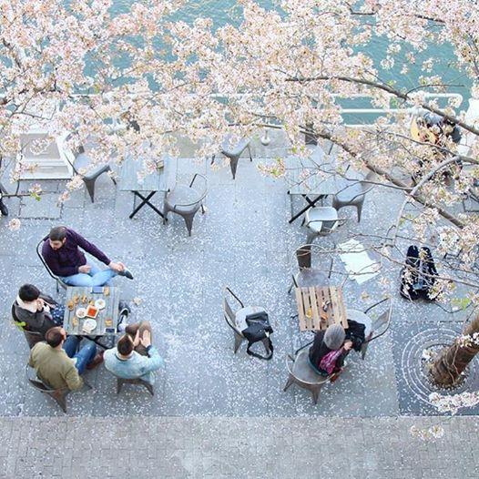 veintiocho, marzana, bilbao, terraza