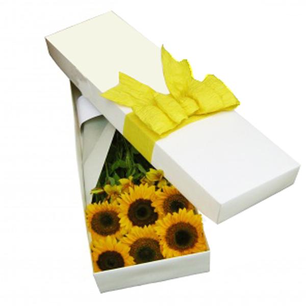 Caja girasoles