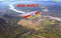 The Meles Jinx, the GERD Nixed?