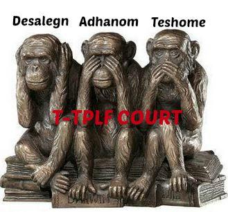 Monkey court 3