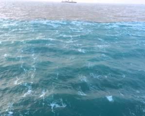 البحرُ