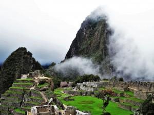 Alpinca Machu Pichu