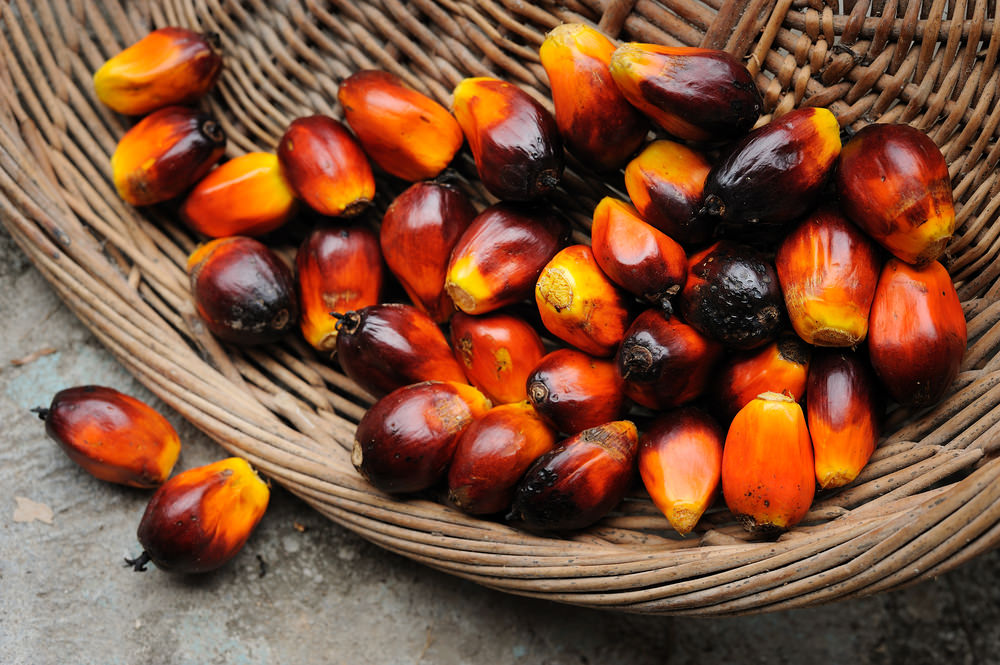 Malaysian Red Palm Oil's Crown Jewel