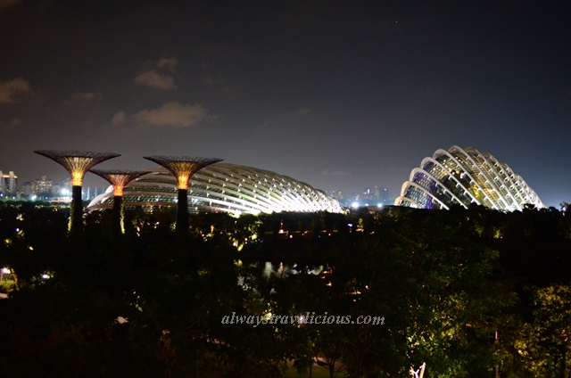 Supertree Grove @ Singapore 9