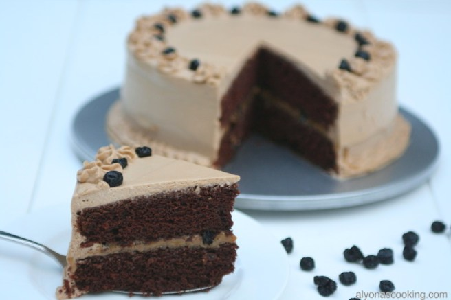 moist-chocolate-cake-dulche-de-luche-condensed milk-dried-blueberries-cake