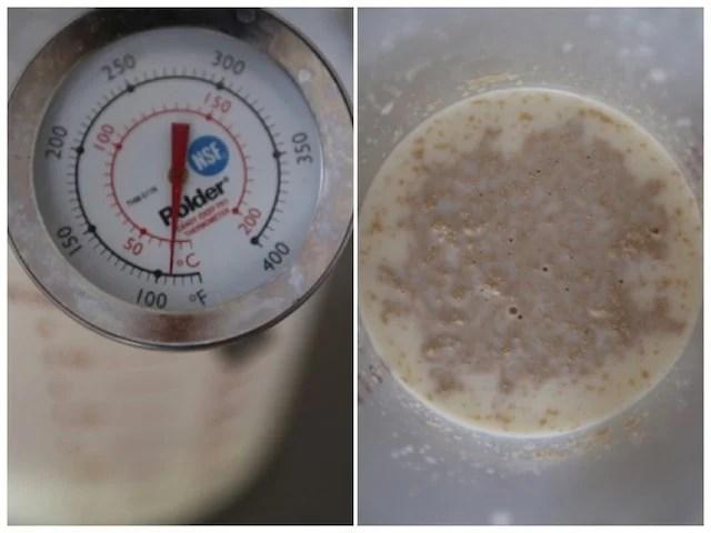yeast milk mixture 3