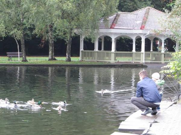 St. Stephen's Green, Dublin, feeding ducks