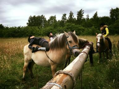 Yoga på hest