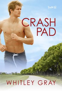 Crash Pad cover mock-up