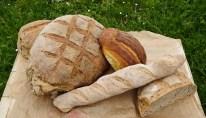 pains et brioches de Graine de Tambouille