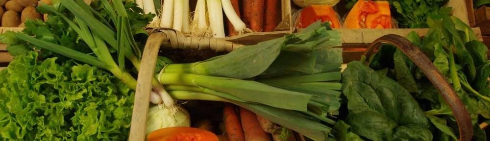 legumes bios à st malo.