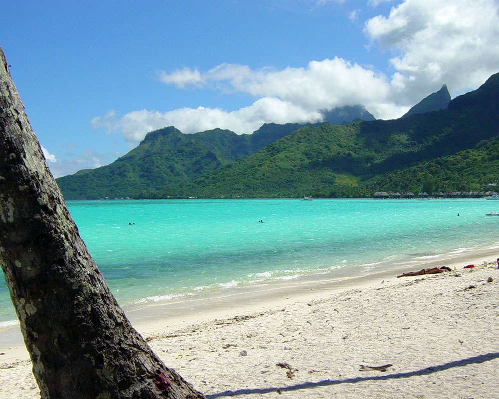 The Island of Moorea - French Polynesia - Photo