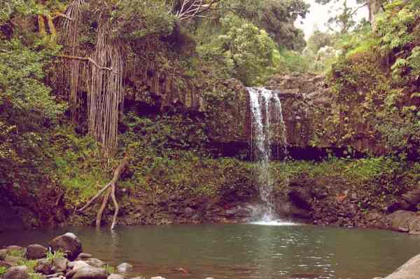 Remote Waterfall - Maui, Hawaii - Photo