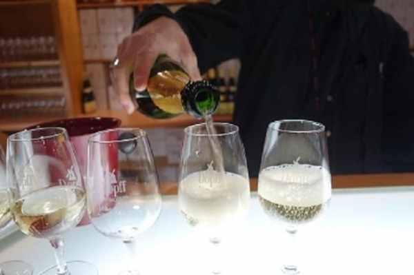 Riquewihr winery
